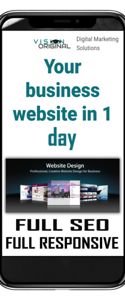 website in 1 day